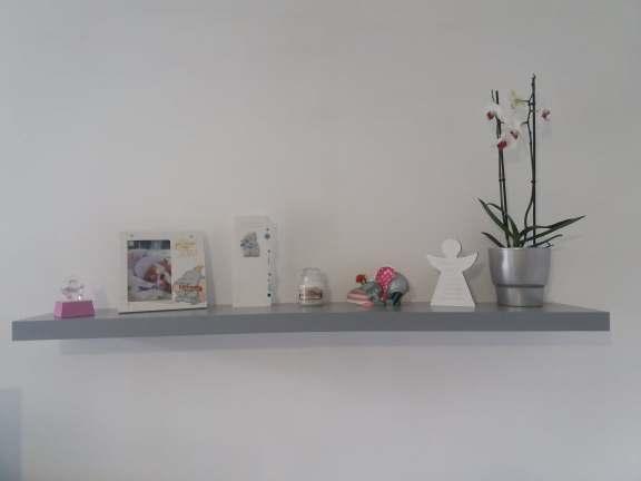 silvers shelf
