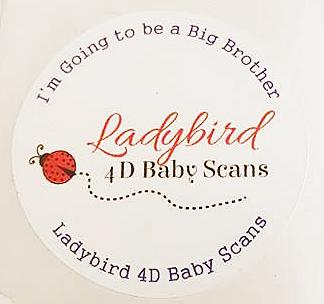 ladybird scan sticker edited