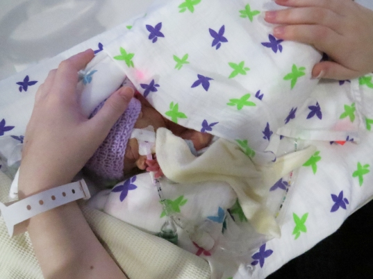 bonding with NICU baby Silver rose bedside cuddles