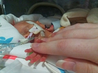holding hands silver rose NICU baby