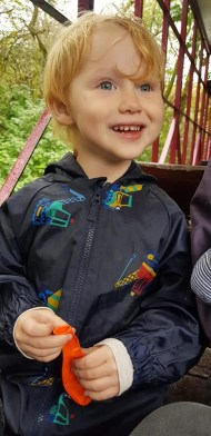beau excited on train lightwater valley
